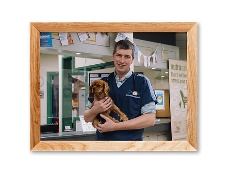 Clinical Director Caring for Pet