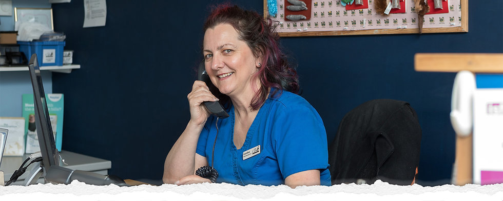 happy receptionist answering phone