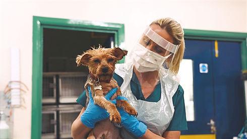 Nurse With Pet