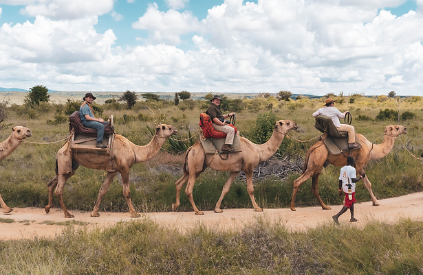 A woman and two men, each riding a camel through the wilderness in Kenya.