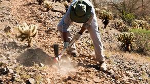 Los conflictos ambientales en relación con el uso del suelo