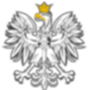 orzel_bez_tla.png