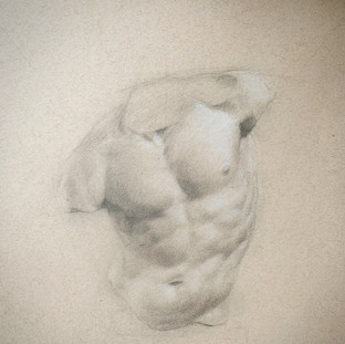 Study of the Gaddi Torso