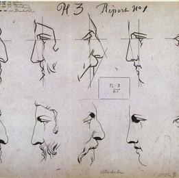 31_plate_I_3_noses.jpg