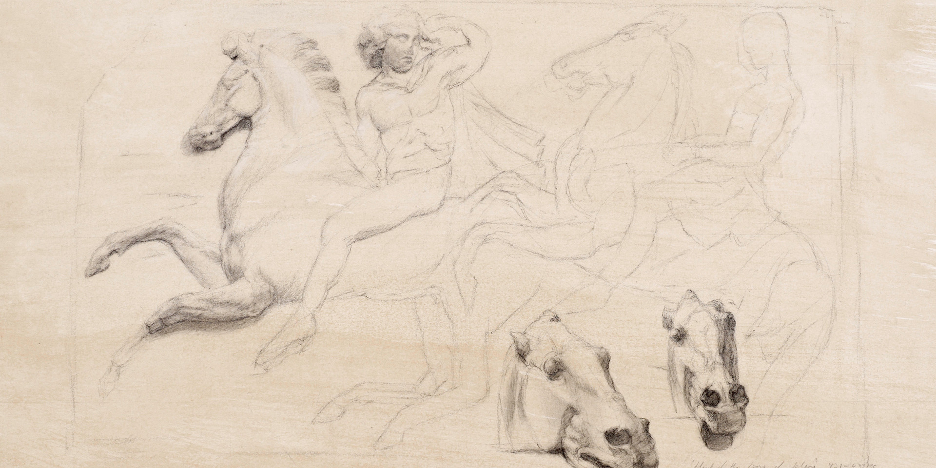 Studies from the Parthenon, British Museum