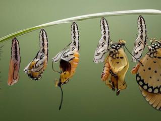 Про стыд, глаза и бабочек в животе