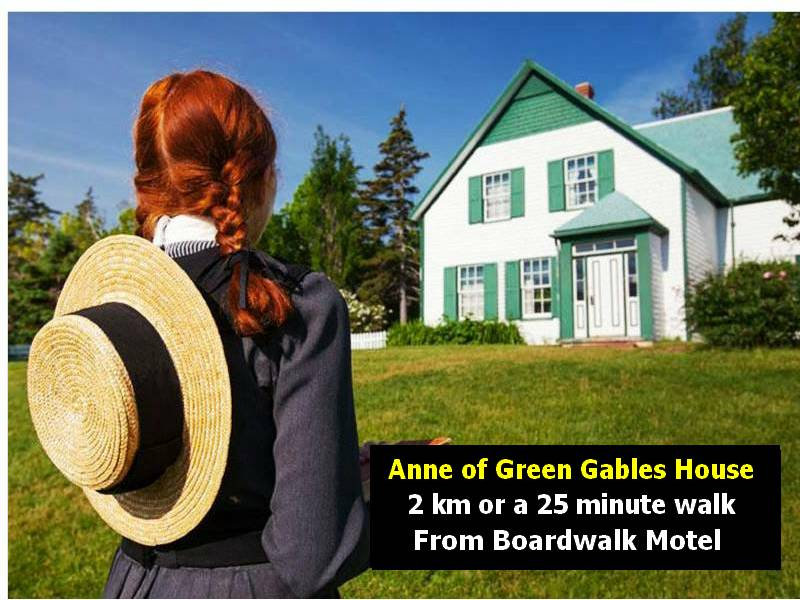 anne-of-green-gables-BWM Cameroni.jpg