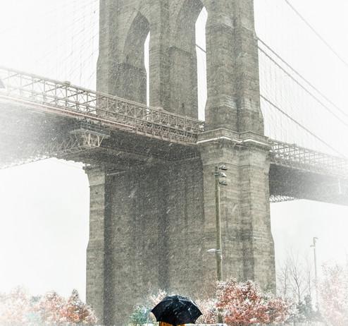 Dumbo_snow day--3.jpg