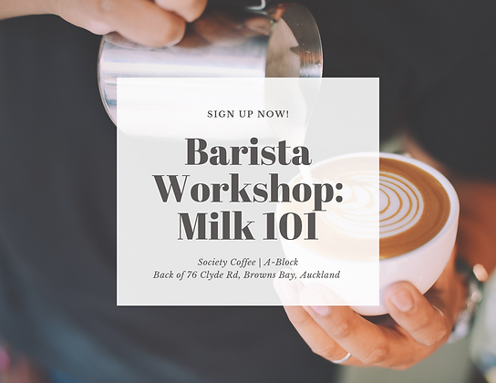 Barista Workshops: Milk 101