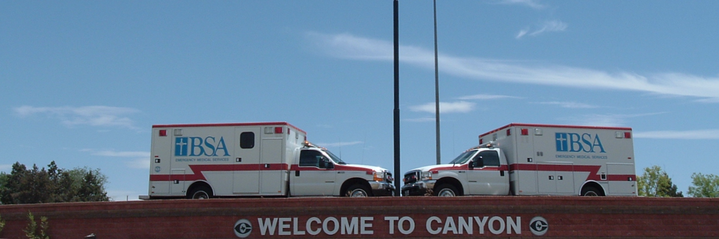 BSA Paramedicine Services