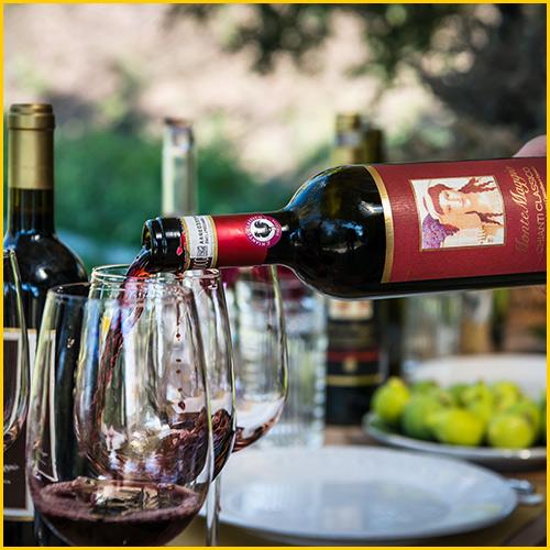 montemaggio-winery-lunch-radda