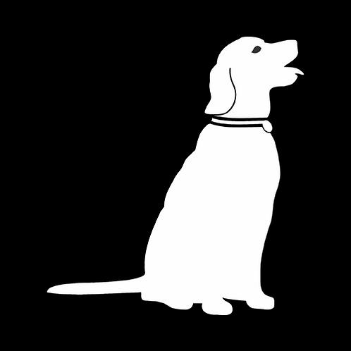 Smiling Labrador (PD28)