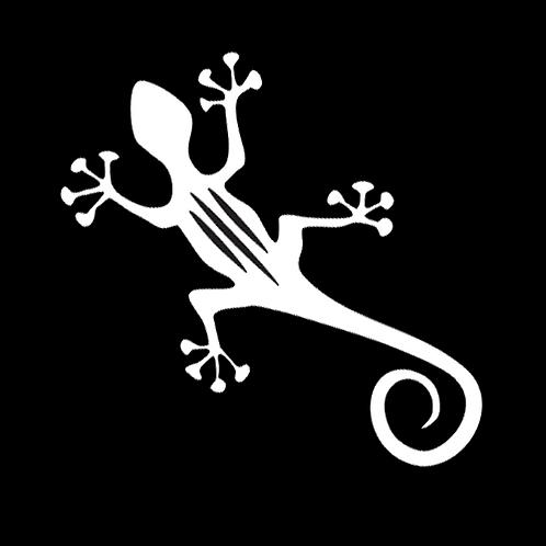 Striped Gecko (AN33)