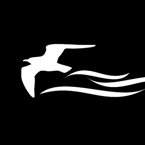 Fast Flying Seagull (B6)