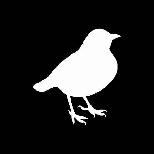 Woodland Bird (PBI12)