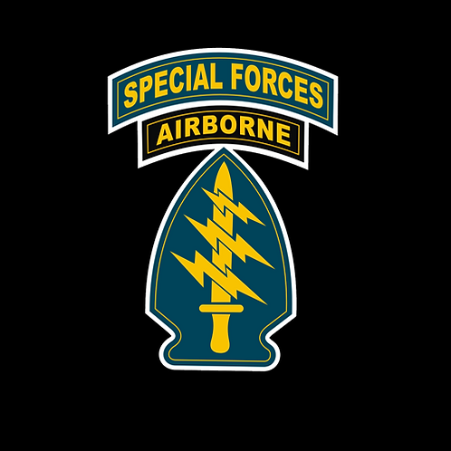 Special Forces Air Force Insignia (A32)
