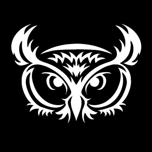 Large Owl (AN9)