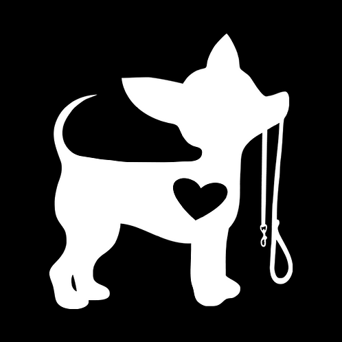 Chihuahua With Leash (PD10)