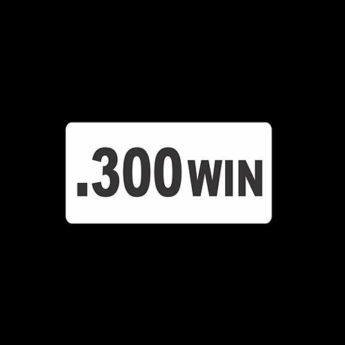 .300 WIN (AM45)