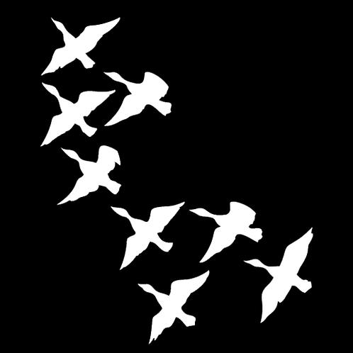 Flock Of Ducks (H23)