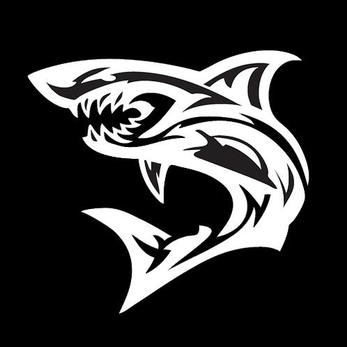 Shark (AN25)