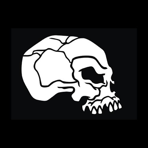 Cracked Skull - Side (SK6)