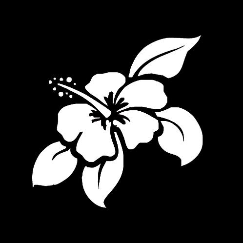 Hibiscus Flower (L1)