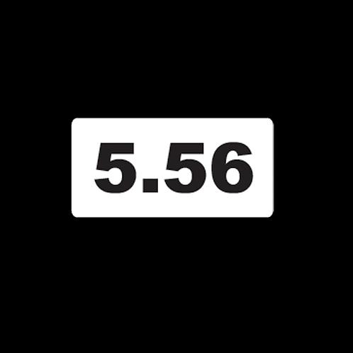 5.56 (AM10)