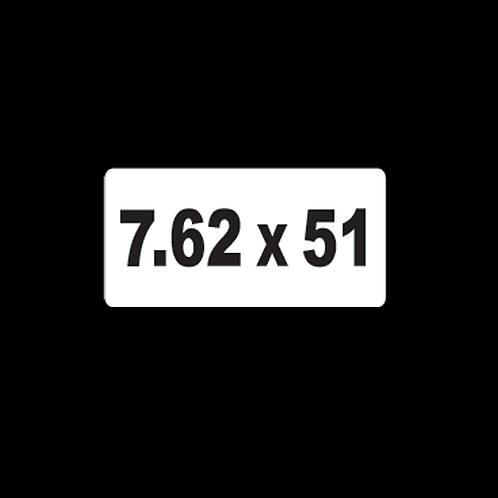 7.62 x 51 (AM25)
