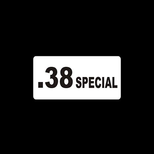 .38 SPECIAL (AM34)