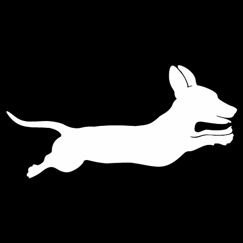 Leaping Dachshund (PD29)