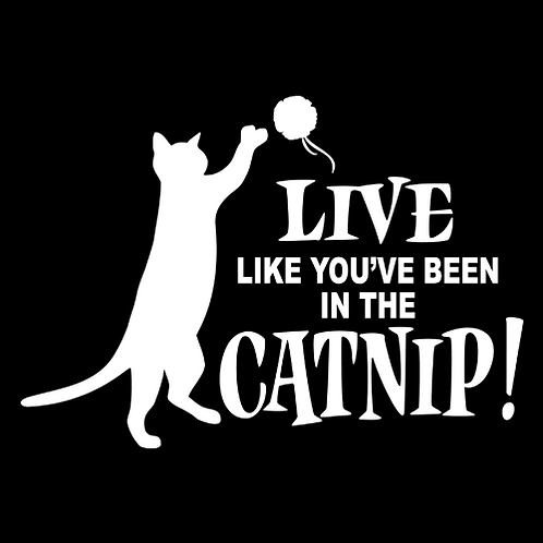 Live Like You've Been In The Catnip (PC22)