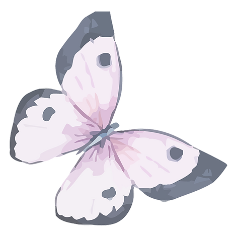 Watercolor%252520Butterfly%2525205_edite