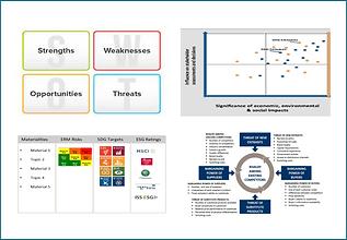 12-ESG Analysis.png