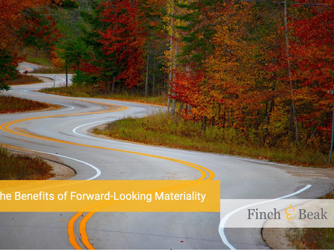 Forward-looking approach to materiality