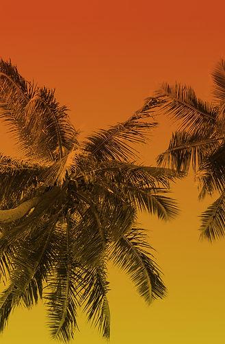 Barbados_Thumb_grow.jpg