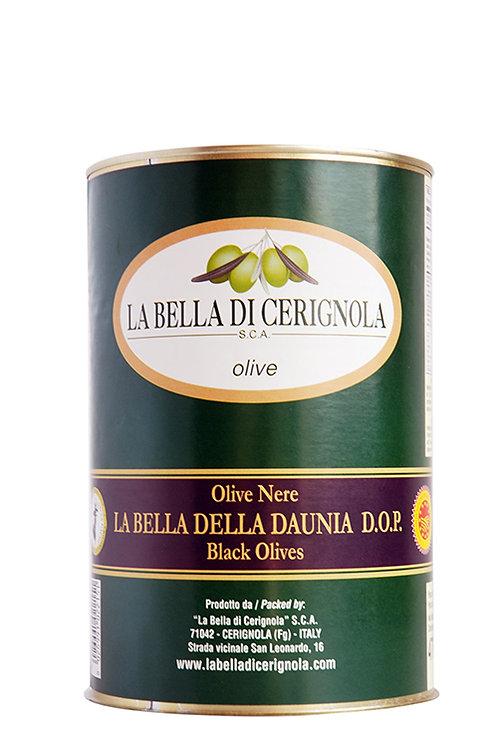 """OLIVE NERE """"DOP LA BELLA DELLA DAUNIA varietà BELLA DI CERIGNOLA"""" 4700"""