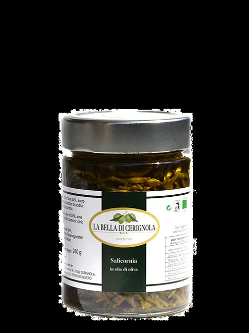SALICORNIA in olio d'oliva