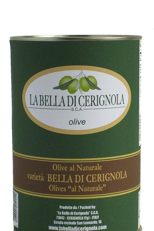 OLIVE AL NATURALE varietà BELLA DI CERIGNOLA 4700