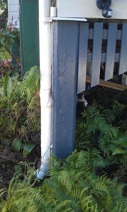 cracked concrete stump.jpg