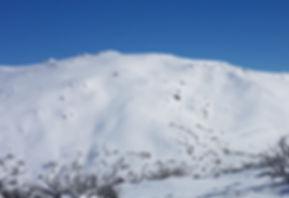 Snowy Mountains Backcountry SMBC Guthega
