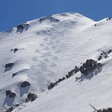 Snowy Mountains Backcountry SMBC Sentinel Pk tracks