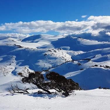 Snowy Mountains Backcountry SMBC Classic Austraian Ski Touring