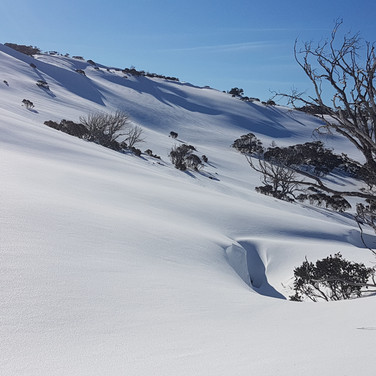 Snowy Mountains Backcountry SMBC Ideal introductory ski touring terrain