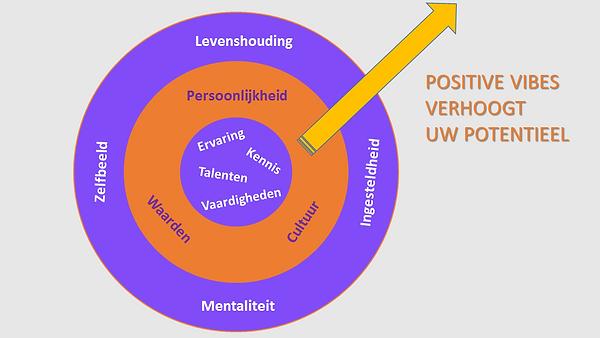 Model zelfontwikkeling van Positive Vibes