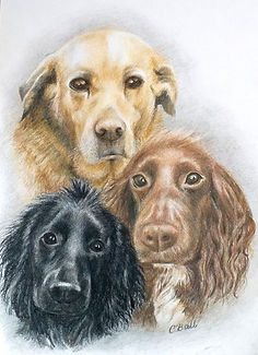 The Three Amigos - Pencil Crayons - NFS.
