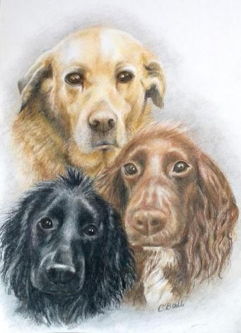 2. The Three Amigos