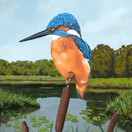 The Kingfisher - Oil on Board with Grey
