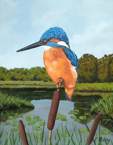 45. The Kingfisher