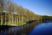 RiverTweed.jpg